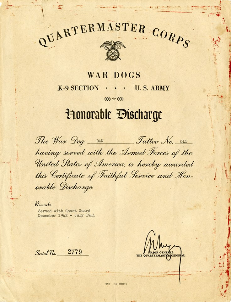 Military Working Dog Wwii The Army S Quartermasters Corps Issued Honorable Discharges